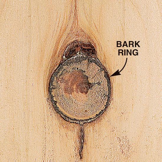 knots popular woodworking magazine