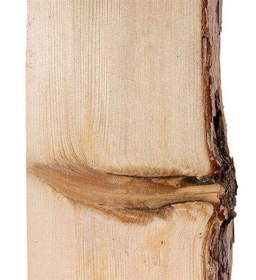 Knots - Popular Woodworking Magazine