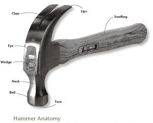 HammerAnatomy