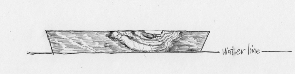 Pencil rendering of the bowl's natural edge and its waterline.