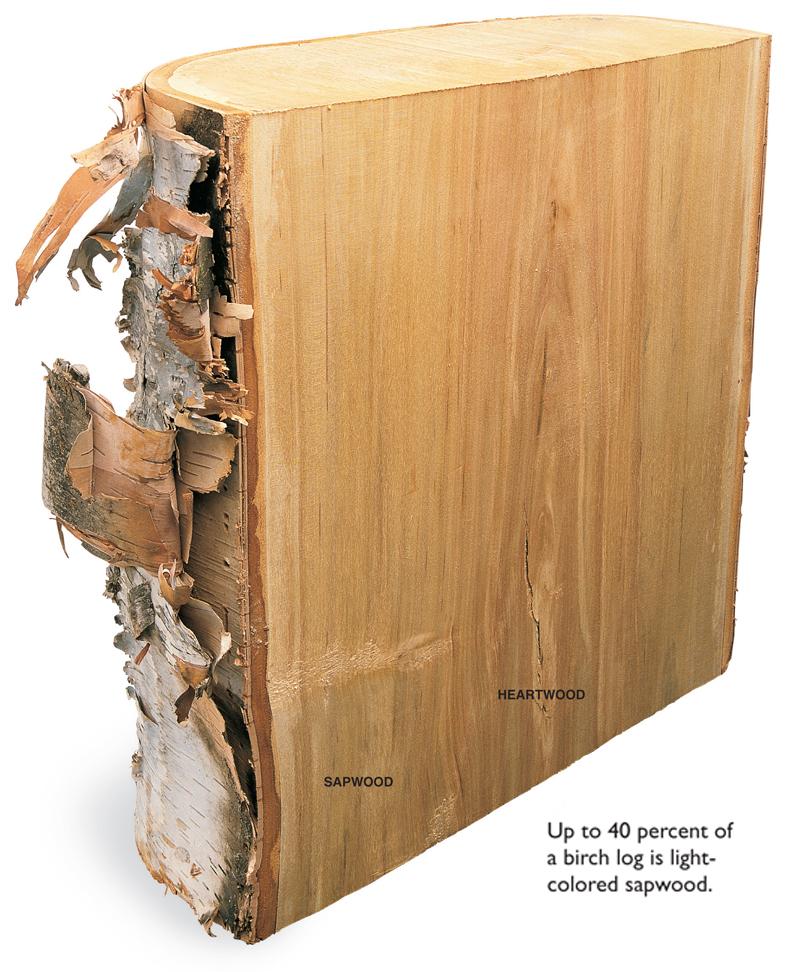 Gentil Popular Woodworking Magazine