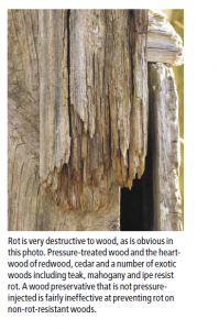 Rot resistance is a key factor in finding the best wood for outdoor furniture.