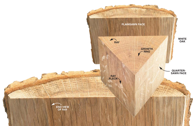 The Way Wood Works: Reading Grain Direction - Popular Woodworking ...