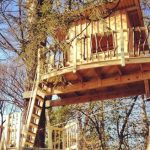 Treehouse by Django Kroner