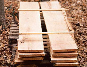 learn-about-types-of-wood