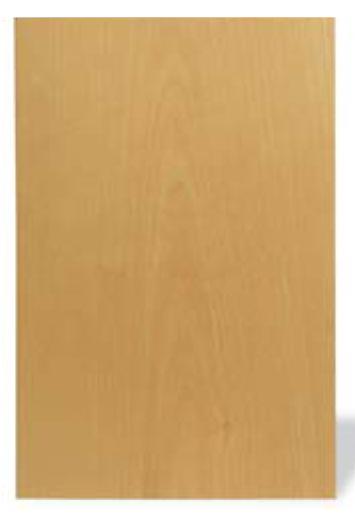 The Way Wood Works: Birch - Popular Woodworking Magazine