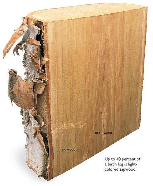 The Way Wood Works Birch Popular Woodworking Magazine