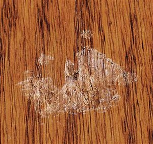 How To Repair A Damaged Wood Finish Diy Touch Up Tutorial