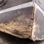rotted_chest_IMG_4274