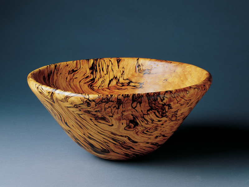 Spalted Wood - Popular Woodworking Magazine