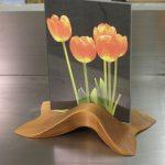 tulipframe