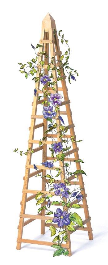 How to Build a Vine Trellis: DIY Garden Trellis Plans