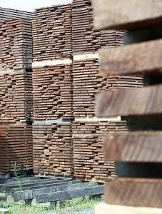 stacks of drying lumber